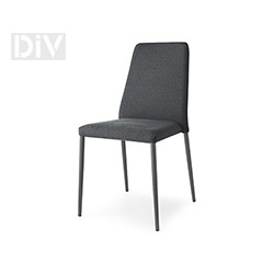 Dining Chairs. Club Chair
